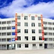 威远县龙会中学